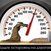 илюха_К